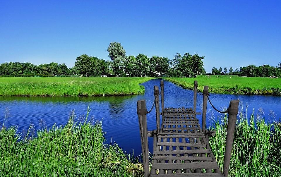 puente.impulsa-tu-bienestar (3)>
